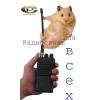 Профессиональные,  любительские радиостанции значимых производителей и условий эксплуатации.